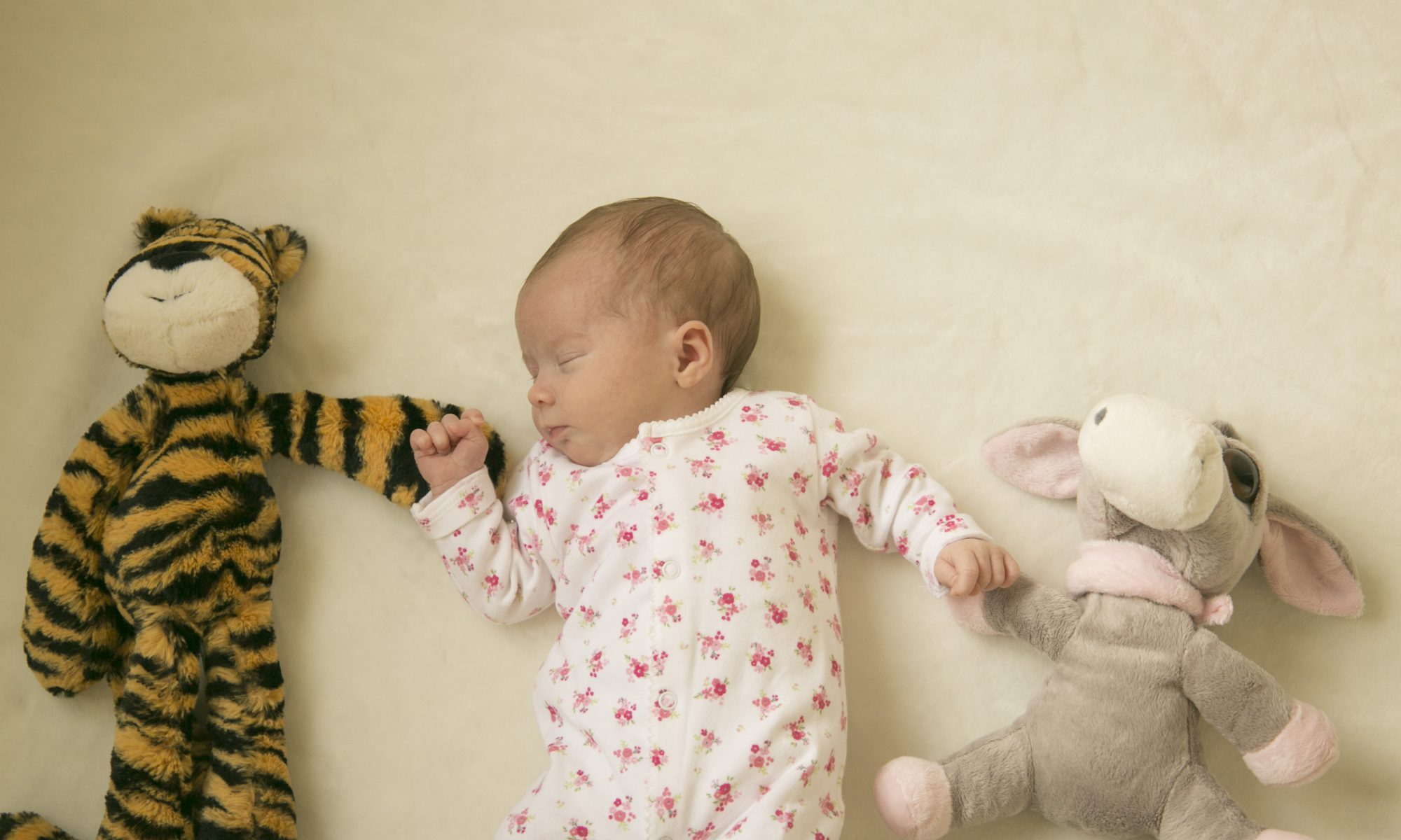 baby and teddy love