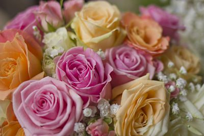 bunch of pastel wedding flowers